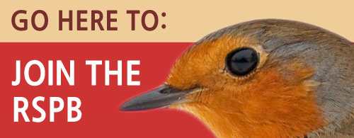Join the RSPB