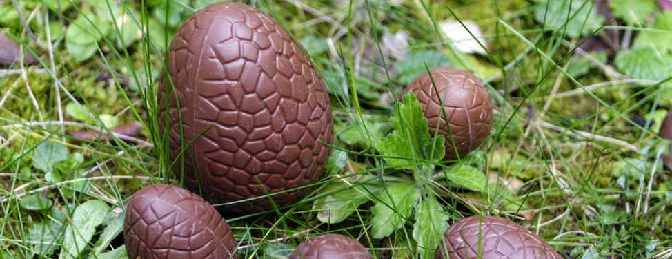 Chocolate Easter eggs in the grass