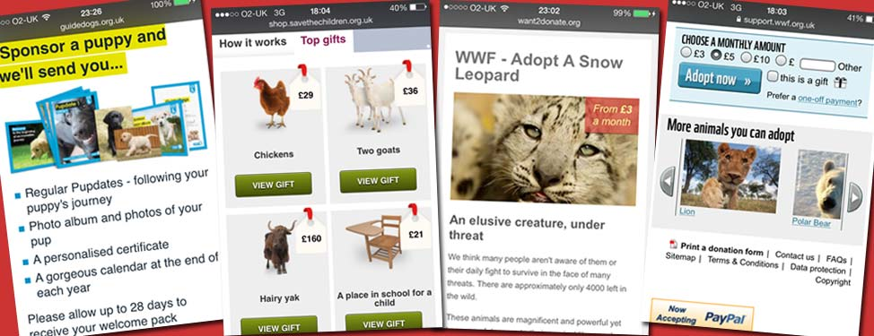 Responsive charity websites showcase